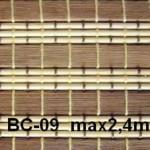 bambus_bc09