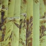 Model lambriu bambus